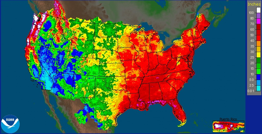 Yearly Precipitation in the Continental United States and Puerto Rico